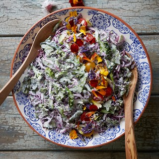 Burgundy-Hatch_Broccoli-Slaw-2